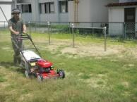 芝刈り状況